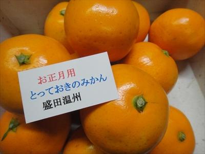 003 (3)_R.JPG