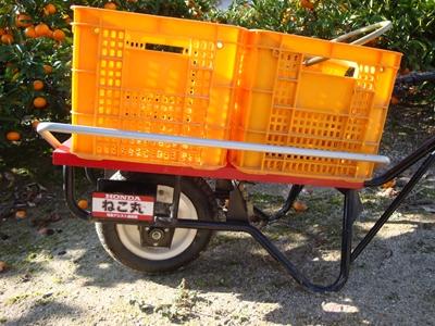 DSC02931_R.JPG