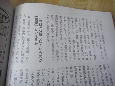 DSC04274_R.JPG